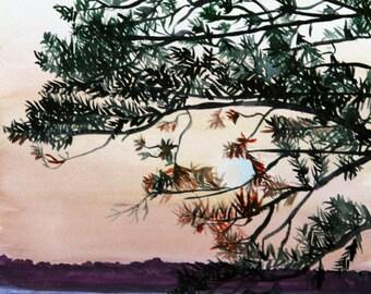 Sunset Silhouette Tree Water Watercolor 9x12 art