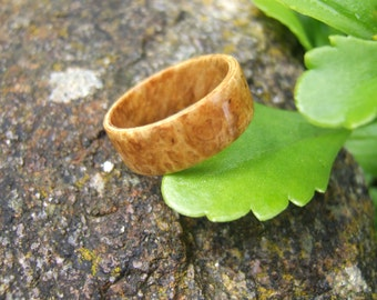 Magnifier amboyna (bentwood ring) ring