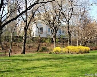 Central Park Photo, City Landscape, New York Photo, New York City, New York, Manhattan, Home Decor, Park Photo, Fine Art Photography