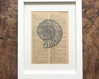 Vintage Book Print Fossil Book Page Print in Frame