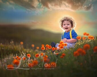 Newborn digital Backdrop  baby boy or girl magic flowers Field sky sunset meadow Download Photography prop 2 JPG/ 152
