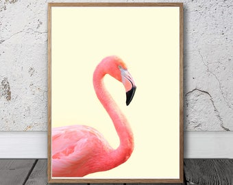 Pink Flamingo Print - Flamingo Wall Art, Digital Print, Exotic Bird Photo, Tropical Prints, Tropical Bird Poster, Girls Room Decor