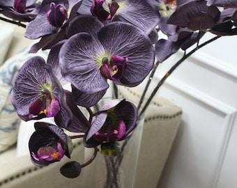 """Luxury Silk Butterfly Orchid Stem in Dark Purple 37"""" Tall"""