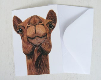 The Charismatic Camel