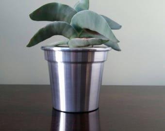 Set Of 3  4 Inch Aluminium Plant Pots/Planters