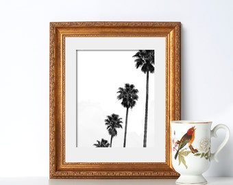 Black and White Palm Trees Tree Art Pretty Scenes Tropical Art California Pop Art Plant Art New Photography Vacation Print Abstract Print