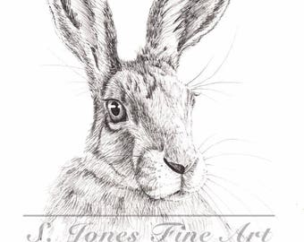 Hare Sketch Giclee Print
