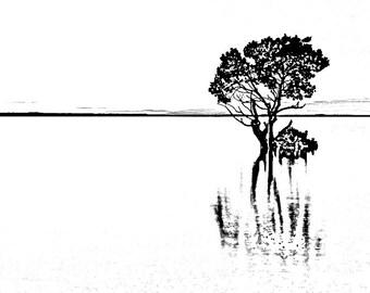 Flooded Tree (A4 Digital Art Print)