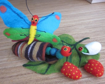 The Caterpillar becomes a butterfly, Cocoon, Caterpillar glutton, butterfly, felt Caterpillar