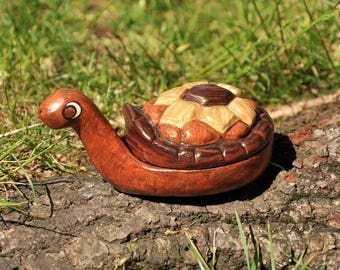 Box chocolate turtle