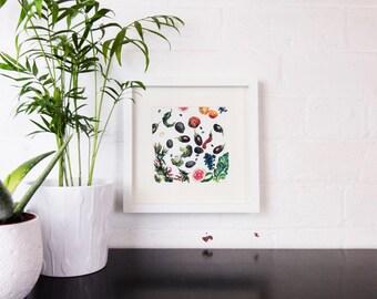 Vegetables - Framed Giclee Print