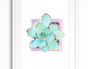 original watercolor painting of succulent plant