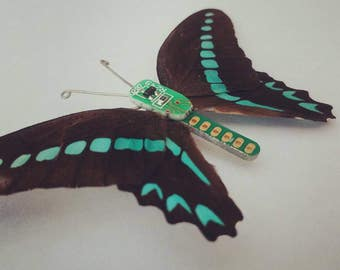 Circuit board taxidermy butterfly