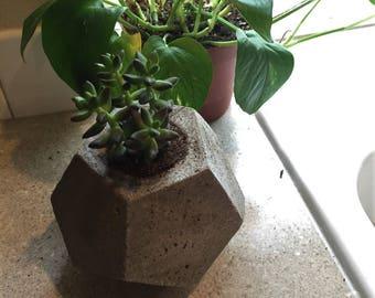 Modern Concrete Pot