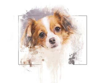Painted Chihuahua