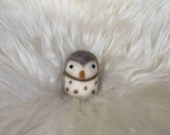 Little Owl Friend
