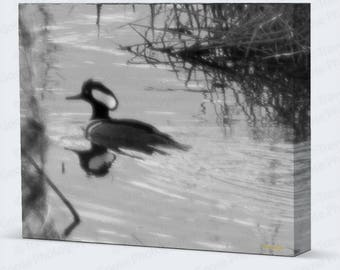 Ghost Hooded Merganser Drake, Canvas Gallery Wrap, Fathers Day Gift, House Decor, Man Cave Photography, Waterfowl Art, WaterfowlGifts,