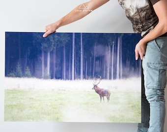 Picture photo 100 x 66 cm cansiglio deer in forex
