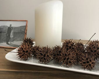 Sweet Gum Ball Seed Pods! DeBugged  and Baked || SETS of 20!