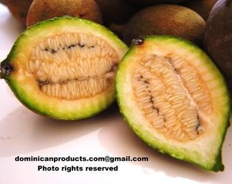 Jagua, Huito Organic fresh fruit. FREE SHIPPING