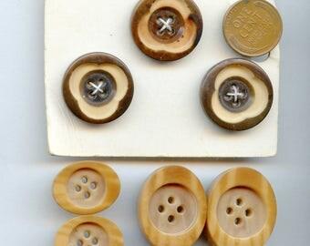 Lot (7) Antique Buttons Vegetable Ivory  (7) Total various sizes, techniques Antique Vintage Brown tan 3526