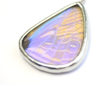 Real Butterfly Wing Necklace. Real Butterfly Wing Pendant. Real Butterfly Wing Jewelry. Pearl Morpho Butterfly Hind Wing.