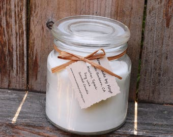 Molten Spark Scented Soy Wax Jar Candle