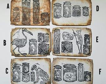 Original ACEO  Relief Printed Curio Cabinets