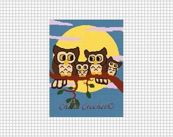 INSTANT DOWNLOAD Chella Crochet Owl Family in Moonlight Afghan Crochet Knit Cross Stitch Pattern Graph