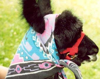 Sponsor A Llama!  May - CSA, Farm, Fiber - Gift, Animal-Lovers, Spinning, Felting, Natural