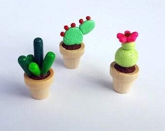 Tiny Miniature Potted Plant Succulent Cactus Trio - Desk Plant - Wedding Favor - Party Gift - Housewarming Present