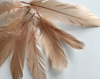 LOOSE  GOOSE  Feathers  / Light Terra Cotta, Dark Skin  / 278