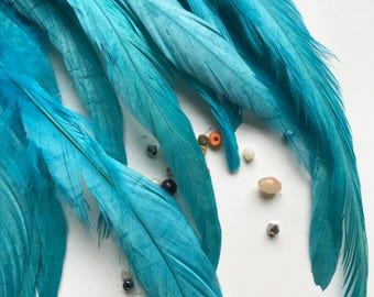 COQUE TAIL FEATHERS Loose, 15 pieces / Aqua Blue /  154
