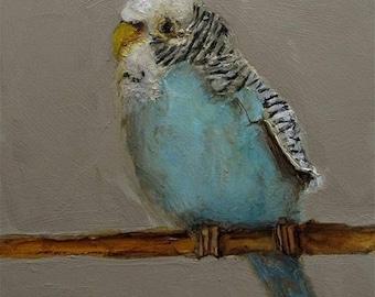 PARAKEET BIRD Colette W. Davis 4x4 Art Giclee print