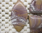 Sonora Dendritic Jasper and Crazy Lace Agate RESERVED FOR JOY