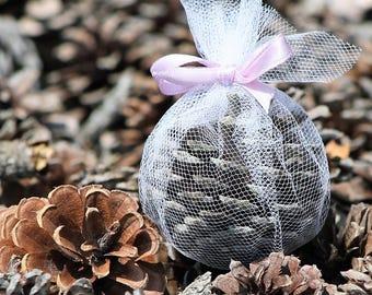 Scented East Coast Pine Cones