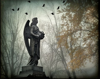 "Surreal angel photograph gothic cemetery graveyard birds dark black grey yellow - ""Stone angel"" 8 x 10"