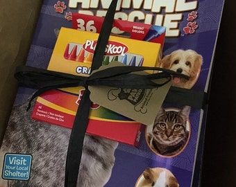Animal Rescue Coloring Book and Crayon Set