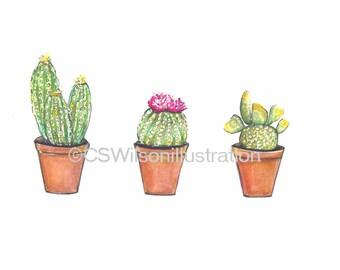 Cacti - Fine Art Print