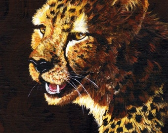 Cheetah Face study 2