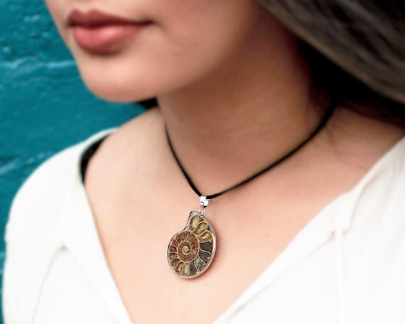 Ammonite Fossil Choker Necklace