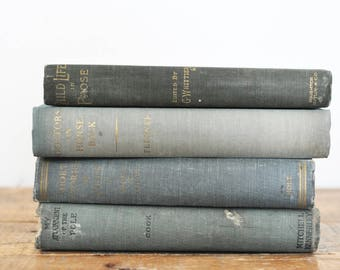 Vintage Book Collection Shades of Green Set of 4 Rustic Decorative Display Books Antique Collectible Book Lot Home Decor Library