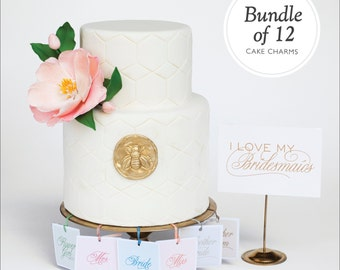 Bridesmaid and Jewelry Gift - 12 Charm Cake Pulls