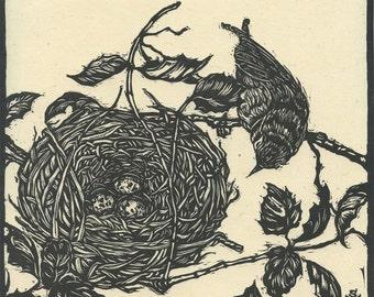 Warbler Nest, Original Woodcut