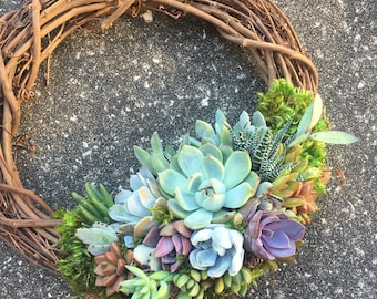 """14"""" Succulent Wreath (made to order)"""