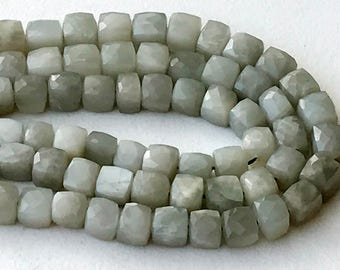 Grey Moonstone Cube Beads, Natural Grey Moonstone Faceted Box Beads, Moonstone Necklace, 5.5-6.5mm, 8 Inch, 25 Pcs - GSA80
