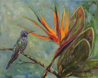 "Hummingbird Bird of Paradise flower wildlife original oil painting by Sandra Cutrer, 8"" x 10"""