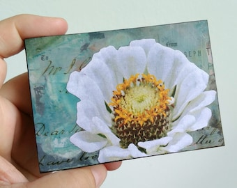 """Flower Art, Mini Original, Mixed Media Photography, Wildflower Photography, Mini Painting, ACEO mini art, 2.5"""" x 3.5"""", white flower """"Floral"""""""