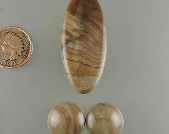 Petrified Sycamore Wood Cabochon, Perified Wood Cab, Sycamore Wood Cab, Designer Sycamore Cab, Pendant Cab, Gift Cab, C2005, 49erMinerals