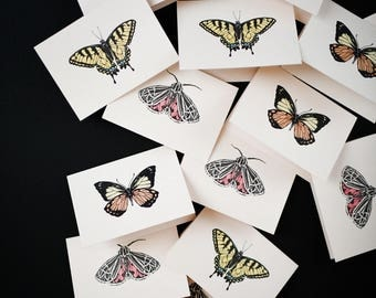 Pack of Letterpress Butterfly Notecards